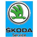 Skoda service Auto Reef